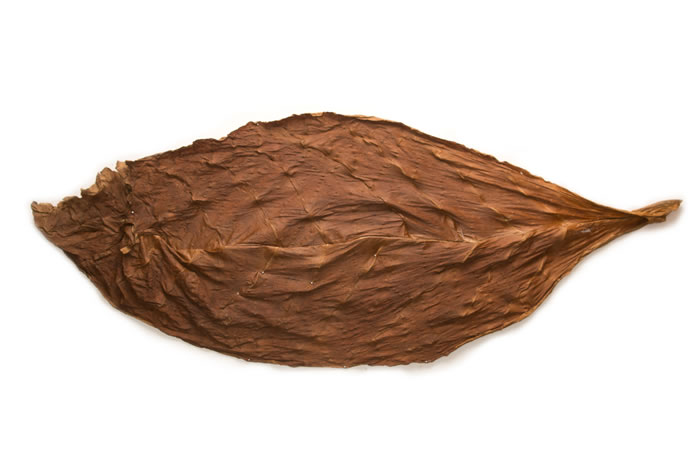 2012 Dark Air Cured Fronto Leaf (CLO)