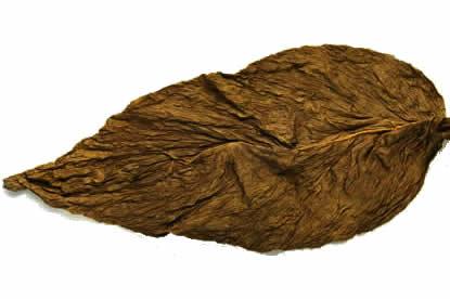 grabba-leaf