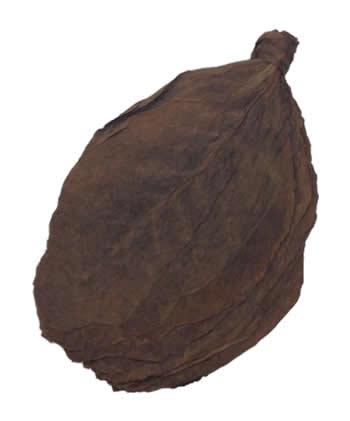 besuki tobacco