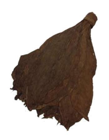 cameroon leaf