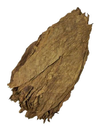 dominican tobacco