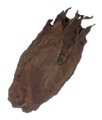 honduran tobacco