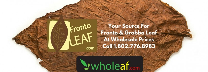 Fronto Leaf Buyer's Guide