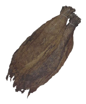 colombian binder tobacco leaf