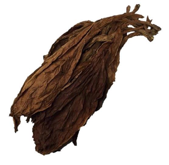 organic burley leaf tobacco