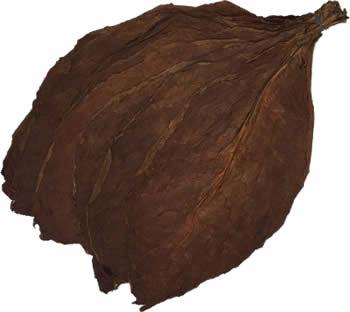 nicaraguan-wrapper