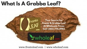 What Is A Grabba Leaf | Grabba Leaf Is A Way To Smoke Fronto Leaf