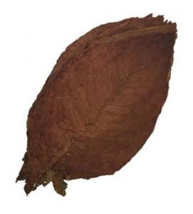 Ecuadorian-cigar-filler
