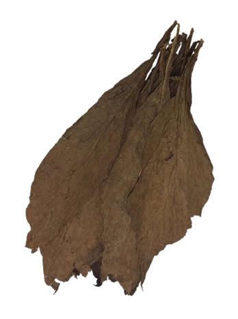 Cameroon-Binder-Tobacco-Leaf