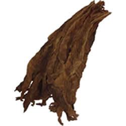 Fronto Leaf