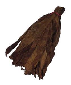 Nicaraguan Binder Tobacco