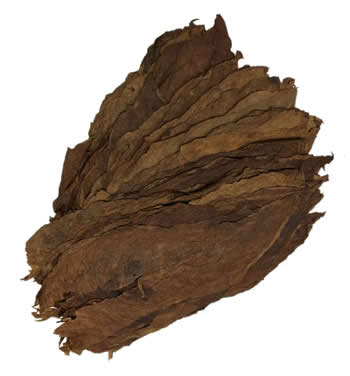 Brazilian-Cubra-Seco-Cigar-Filler-Leaf