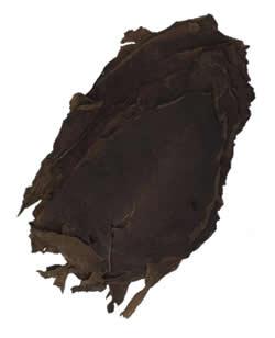 Nicaraguan Tobacco | Jalapa Ligero Long Filler