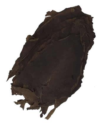 Nicaraguan-tobacco-jalapa-ligero