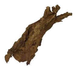 Burley Leaf Tobacco