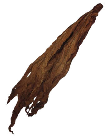 dark-air-cured-fronto-leaf-o