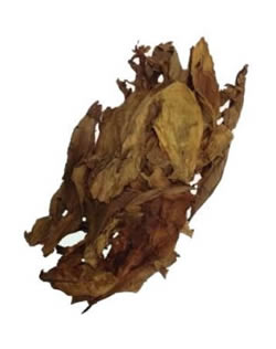 Izmir Turkish Oriental Tobacco Leaf