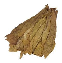 Semi Oriental Tobacco 456