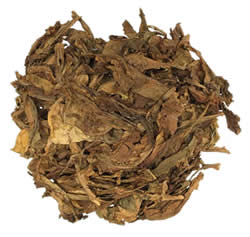 Samsun Turkish Oriental Tobacco Leaf