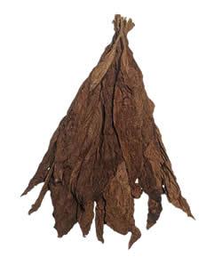Ecuadorian Corojo Wrapper