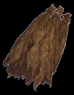 Ecuadorian Seco Binder Leaf