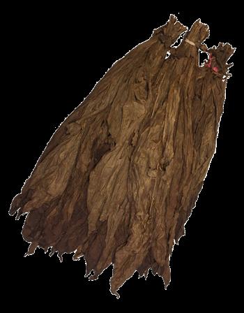 ecuadorian-seco-binder-leaf