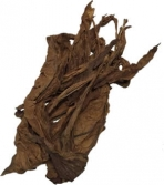 QB52 Fronto Leaf [L]