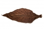 Dark Fire Cured Fronto Leaf