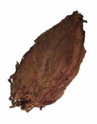 Cigar Leaf